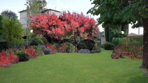 Progetto giardino privato